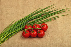 Bunch of cherry tomato and spring onion shots at canvas Royalty Free Stock Photo