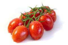 Bunch of cherry tomatoes Stock Image