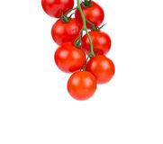 Bunch of cherry tomatoes. Royalty Free Stock Photos