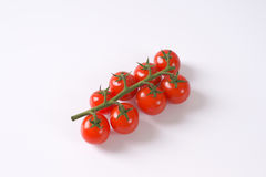 Bunch of cherry tomatoes Stock Photos