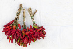 Bunch of red chillies, hot peppers on the white wall Stock Image