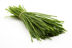 Bunch of chives Royalty Free Stock Photos