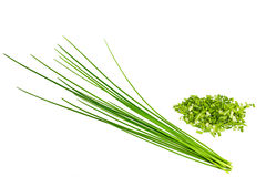 Bunch chives Royalty Free Stock Photos