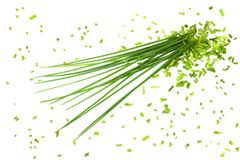 Bunch chives Royalty Free Stock Images