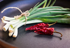 Bunch of chives and dry chillies Stock Photography