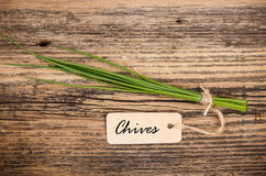 Bunch of chives Royalty Free Stock Images