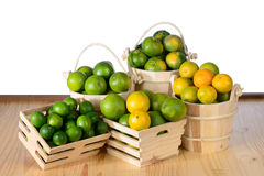 Bunch of citrus fruits Stock Photography