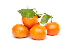 Bunch of clementines, mandarines, tangerines Royalty Free Stock Images