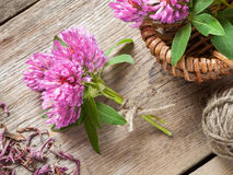 Bunch of clover and basket with flowers Royalty Free Stock Images