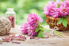 Bunch of clover and basket with flowers Royalty Free Stock Image