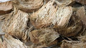 Coconut fibers texture. A bunch of coconut fibers stacked together, laboratory research cracked coconuts, dry fiber of palm seed royalty free stock photography