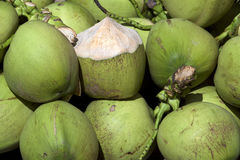Bunch of coconuts Royalty Free Stock Photo