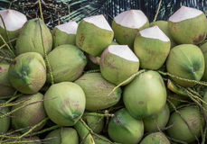 Bunch of coconuts Royalty Free Stock Photos