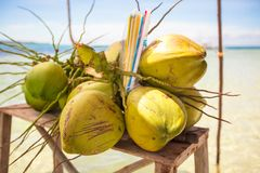 Bunch of coconuts on tropical island Royalty Free Stock Image