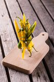 Bunch of color chlli peppers with herb sprig. Vertical photo with bunch of green and yellow chili peppers together with sprig of rosemary herb bonded by chive Stock Photo