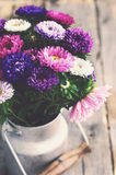 Bunch of colorful asters in old milk can, vintage effect Stock Photo