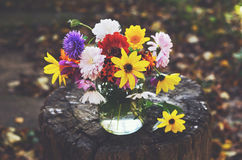 Bunch of colorful autumn flowers in glass jar Royalty Free Stock Photos