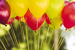 Bunch of colorful balloons . Royalty Free Stock Photos