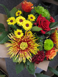 Bunch of colorful of flowers Stock Photography