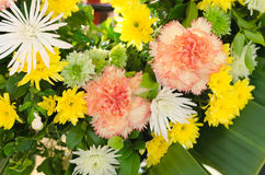Bunch of colorful flowers Stock Photography