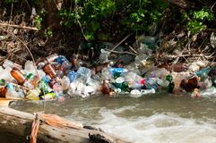 A bunch of colorful non degradable  plastic bottles. In the small river Stock Photography