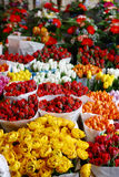 Bunch of  colorful roses and tulips Royalty Free Stock Images