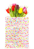 Bunch of colorful tulips in a gift bag Royalty Free Stock Photo