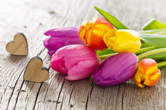 Bunch of colorful tulips with hearts in spring for mothers. Bunch of colorful tulips with wooden hearts in spring for mothers day or valentines day Stock Image