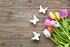 Bunch of colorful tulips in spring with butterflies royalty free stock photo