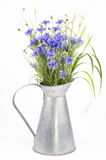 Bunch of cornflowers Royalty Free Stock Photos