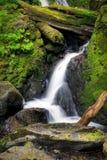 Bunch Creek Falls Royalty Free Stock Image
