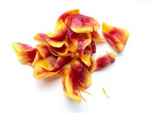 A bunch of crushed tulip petals Stock Photography