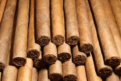 Bunch of Cuban Cigars Stock Images