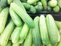 A bunch of cucumber Royalty Free Stock Photos