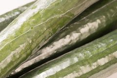 Bunch of cucumber wrapped in plastic films. Close up and background Royalty Free Stock Photography