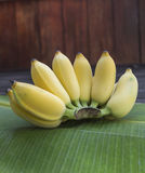 Bunch of Cultivated bananas on banana leaf Royalty Free Stock Photography