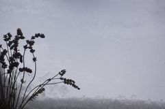 Bunch of cut lavender flowers on snow window for design a lot of copy space royalty free stock photography