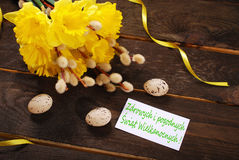 Bunch of daffodils with catkins and card for easter greetings in Royalty Free Stock Photos