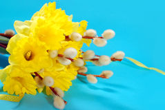 Bunch of daffodils and catkins for easter Stock Photography
