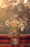 Bunch of daisies on wooden window sill Royalty Free Stock Photo
