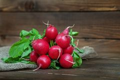 Bunch of delicious red radishes. The concept of healthy eating a. Nd vegetarianism Stock Image