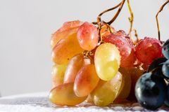 Bunch of delicious red yellow grapes indoors royalty free stock photo