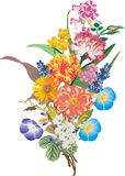 Bunch of different flowers illustration Royalty Free Stock Photo