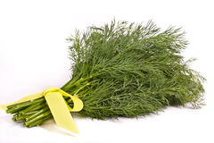 Bunch of dill Royalty Free Stock Image