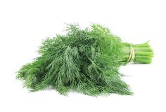 Bunch of dill. Royalty Free Stock Photo