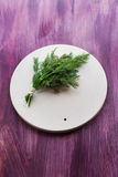Bunch dill Royalty Free Stock Images