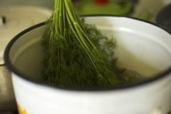 Bunch of dill in the pan for cooking crayfish stock images