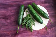 Bunch of dill and three fresh cucumbers. On the light plate Stock Photo
