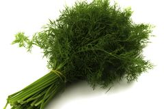 Bunch dill on a white background stock image