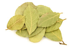 Bunch of dried bay leaves Royalty Free Stock Photos